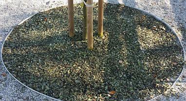 park-maribor-martincic